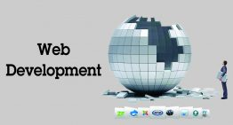 Website architecture, Development and Testing